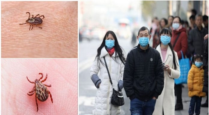 चाइना के टिक बोर्न वायरस