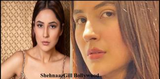 Shehnaaz Gill new Project